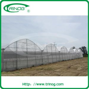 Glavanized steel Structure Agriculture Greenhouse in film cover pictures & photos
