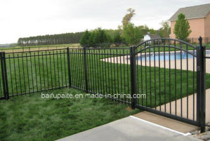 Powder Coated Wrought Iron Fence pictures & photos