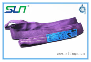 2017 100% Polyester Lifting Belt Ce GS Certificated Endless Round Sling pictures & photos