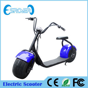 Wholesale 1000W Motor Powerful Electric Motorcycle Electric Scooter (Esrover E5)