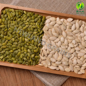 Chinese Shine Skin Pumpkin Seeds Kernels to Europe pictures & photos