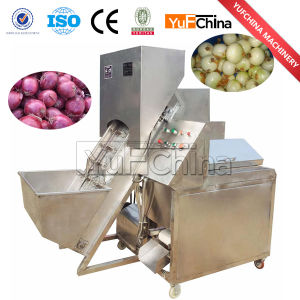 Popular Onion Peeling and Onion Root Cutting Machine pictures & photos