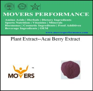 Organice Natural Plant Extract--Acai Berry Extract pictures & photos