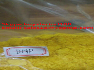 DNP for Weight Loss, 51-28-5 / 2, 4-Dinitrophenol pictures & photos