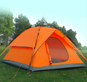 Pop up Automatic Fiber Glass Camping Tent for Outdoor (MW4027) pictures & photos