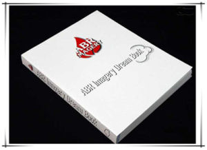 Busniess Brochure Prinitng Service (jhy-149) pictures & photos