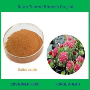 Factory Supply Natural Salidroside Powder pictures & photos