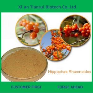 100% Natural Hippophae Rhamnoides Extract Powder pictures & photos