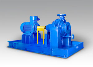 API 610 Oh2 Chemical Process Pump for Oil pictures & photos