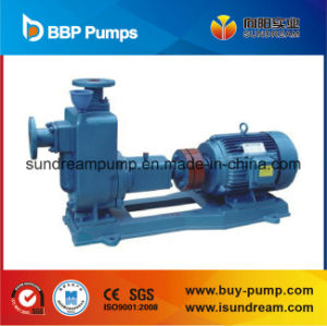 Sewage Centrifugal Pump or Chemical Pump pictures & photos