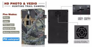 12MP Infrared Scouting Camera Night Vision Hunting Camera Traps Wildlife Trail Cameras Detection 85FT with 44PCS LED pictures & photos