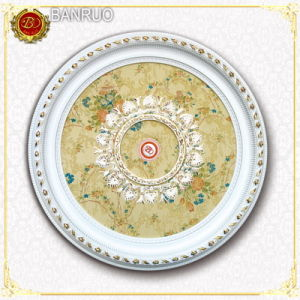 Artistic Ceiling Lamp Plate (BRRD09-S-076) pictures & photos