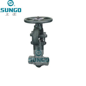 ASME Forged Steel Globe Valve pictures & photos