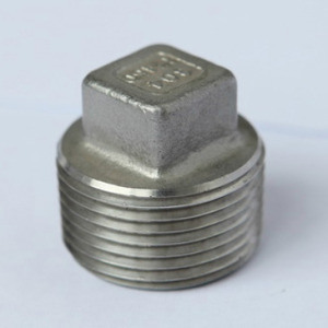 Stainless Steel Threaded Fittings Series Square Plug pictures & photos
