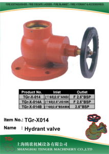 """Brass Fire Hydrant Valve: BS336 2-1/2"""" (F/M) (Flange) pictures & photos"""