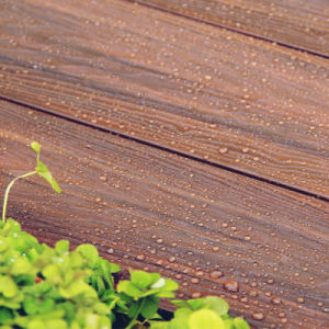 Capped Wood Plastic Composite Decking pictures & photos