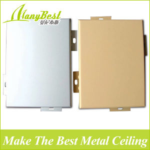 Foshan Customized Metal Panel for Interior, Exterior Decoration pictures & photos