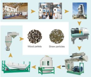 China Cheap Price Wood Pellet Mill pictures & photos