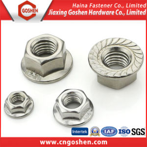 DIN9623 M5-M20 Stainless Steel Hexagon Nuts with Flange pictures & photos