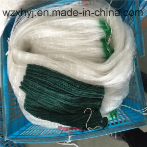 PE 11md Edge 0.3mm Nylon Monofilament Fishing Net pictures & photos