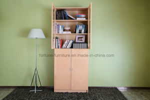 Modern Wooden Birch Veneer Clear Lacquer Bookcase with Glass Doors (AD-FY-N705C-SJ) pictures & photos