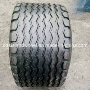 Tyre 19.0/45-17 14pr Aw for Impelement Farm Trailer pictures & photos