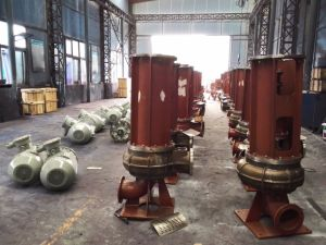 China Best Vertical Sewage Pump pictures & photos