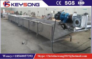 Vegetable Fruits Cleaning Production Line pictures & photos