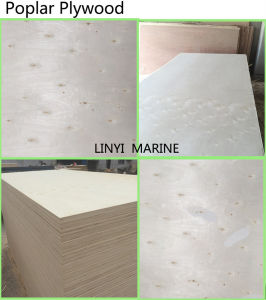 Melamine/Poplar Plywood Furniture Mat LVL pictures & photos