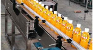 Full-Automatic Hot Fruit Juice Filling Bottling Machine Price pictures & photos