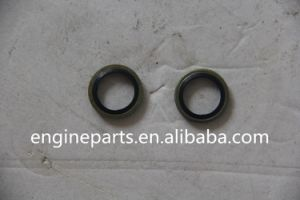 Kubota DC70 Parts 04717-01200 pictures & photos