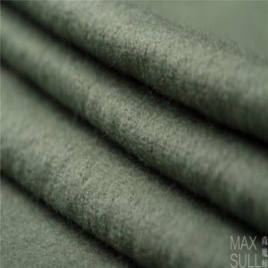 100% Durable Wool Fabric for Winter in Light Green pictures & photos
