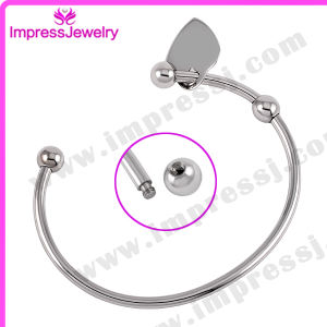 Stainless Steel Bracelets & Bangles with Tag Cremation Jewelry Bijoux pictures & photos