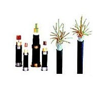 XLPE/PVC Armoured XLPE Cable Multi Core Electric/Electrical Cable pictures & photos