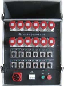 12 Channels Hoist Chain Controller in Flight Case pictures & photos