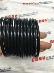 Ffkm O Rings with 320º C High Temperature Resistance pictures & photos