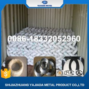 Bwg 20, 2kg Roll Galvanized Iron Wire for Irap, Jorden Market pictures & photos