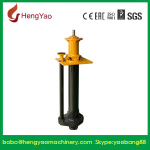 Supplier Industrial Vertical Slurry Pump pictures & photos