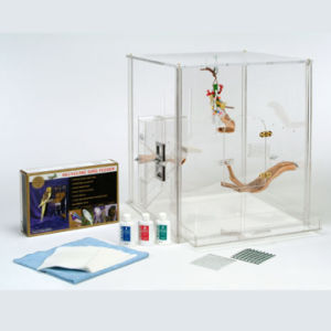 Clear Acrylic Bird Feeder, Suction Window Feeders pictures & photos