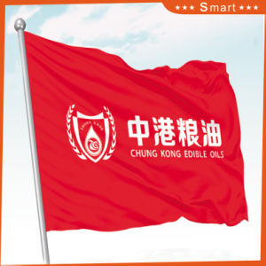 Custom Bank Institute Flag for Outdoor or Event Advertising pictures & photos