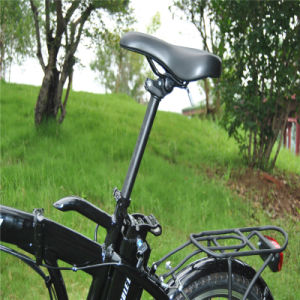 Cheap Small Folding E Bike pictures & photos