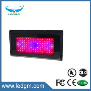 LED Plant Grow Light 85-100W with Seconday Lens pictures & photos