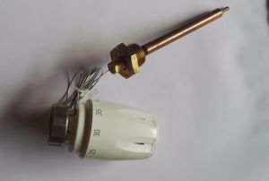Remote Sensor Thermostat Remote Capillary Temperature Controller pictures & photos