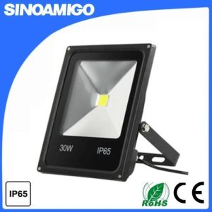10W-100W COB LED Floodlight with Ce RoHS, Outdoor Lighting pictures & photos