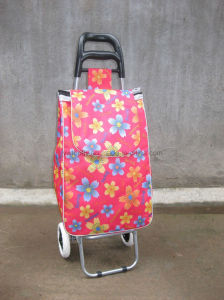 Folding Supermarket Shopping Trolley Luggage Cart pictures & photos