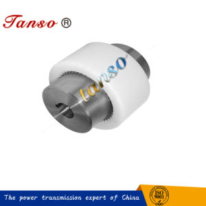Nylon Type Gear Coupling with Easy Maintenance and Low Noise pictures & photos
