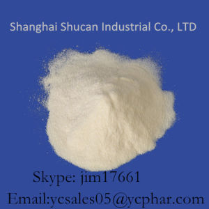 High Purity 99% Pharmaceutical Raw Material Fasoracetam CAS 110958-19-5 pictures & photos