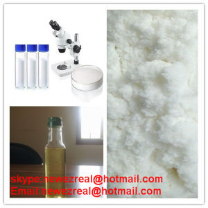 CAS: 62-90-8 Nandrolone Phenylpropionate, Pharmaceutical Raw Materials Powder pictures & photos