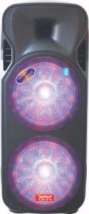 Feiyang/Temeisheng Dual 15 Inch Big Power Light Bluetooth Speaker----F86-16 pictures & photos
