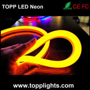 2years Warranty LED Neon Flex Hose for Indoor Outdoor Decoration pictures & photos